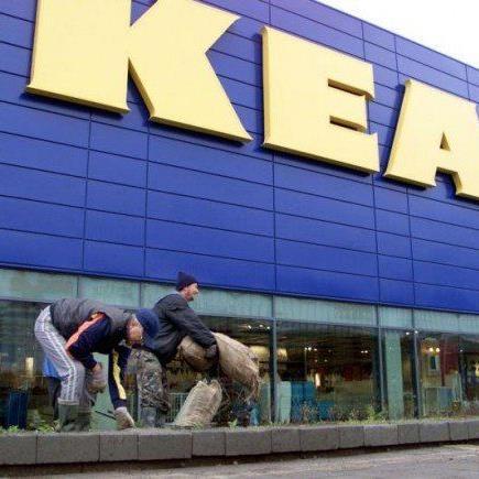 Ein Ikea in Lustenau? Frühestens im Jahr 2020, so Bürgermeister Fischer.