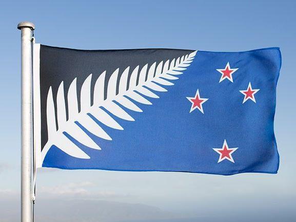 Grauer Farn auf blau-schwarzem Grund könnte im März altes Design mit Union Jack ersetzen