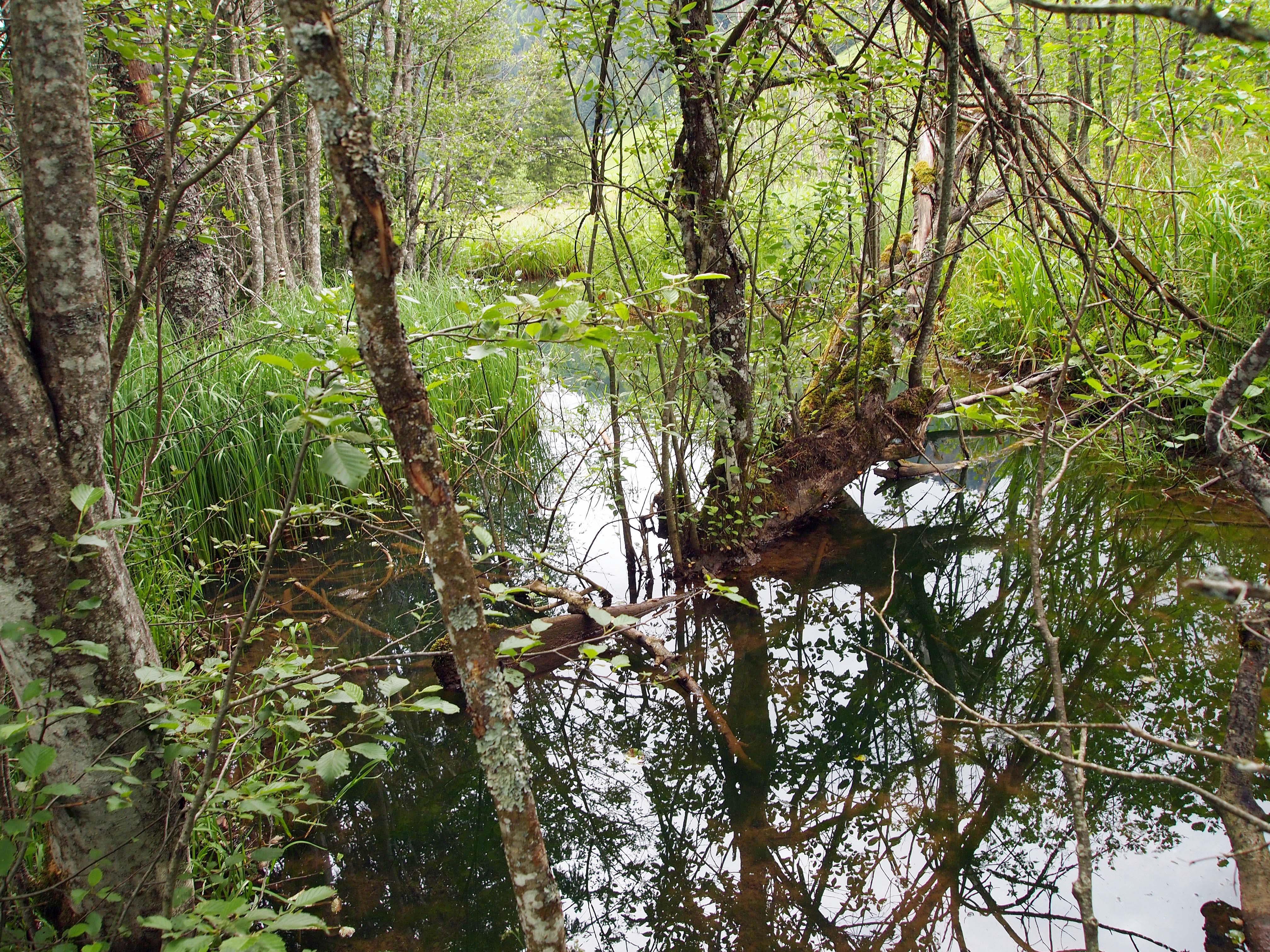 Beitrag zum Erhalt der Naturvielfalt: Land unterstützt Kleinbauern.