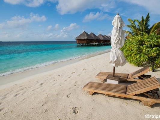 Das Mirihi Island Resort auf den Malediven wurde von TripAdvisor zu einem der zehn besten Hotels 2016 gekürt.
