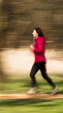 Geist und Seele tragen also auch wesentlich zur körperlichen Gesundheit bei