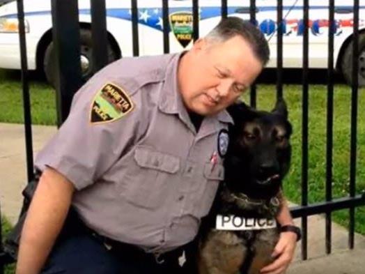 Internet kämpft für US-Polizist und seinen Diensthund Ajax.