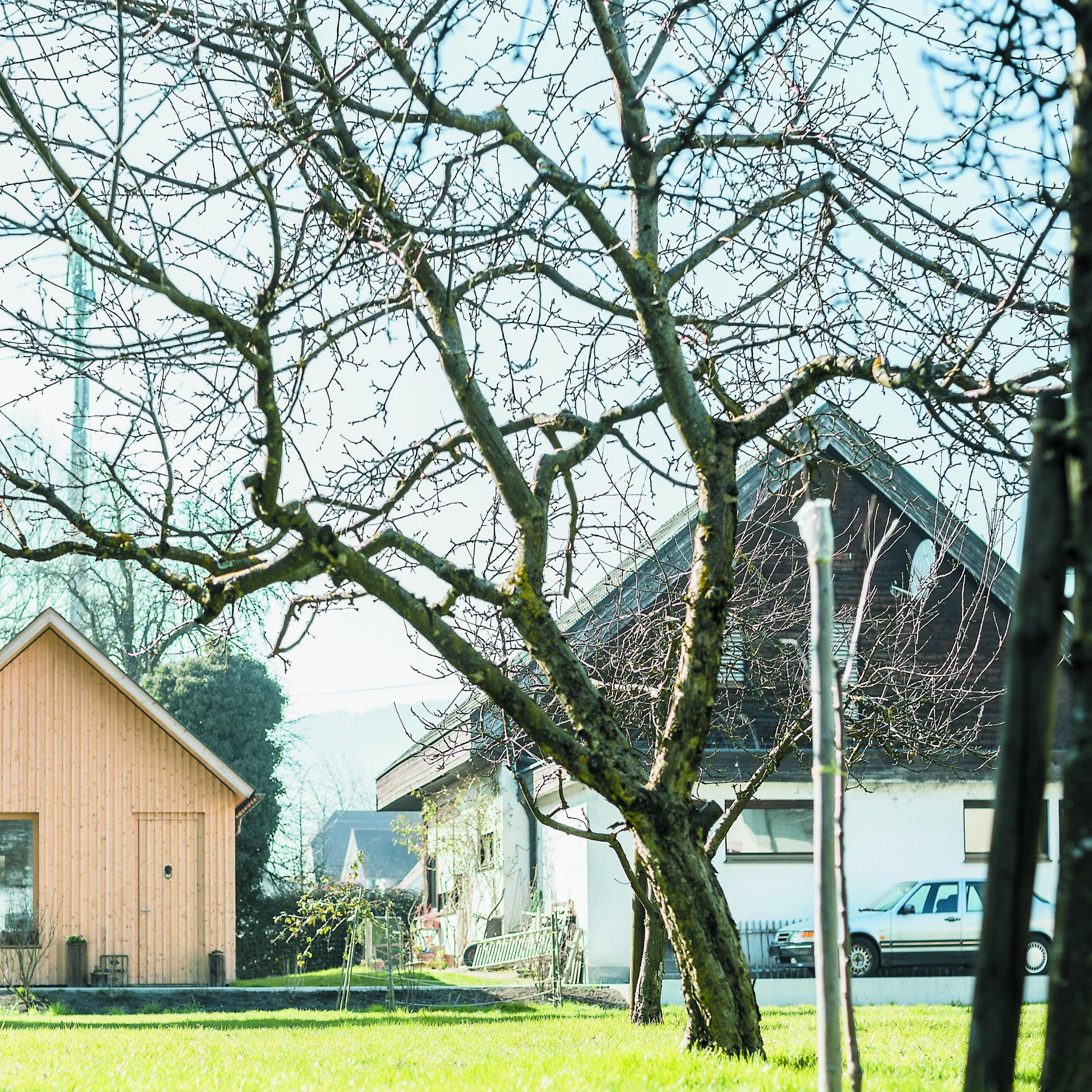 Bauherrin Julia P. entschied sich, ein für ihre Bedürfnisse angefertigtes Zuhause im elterlichen Garten zu planen.