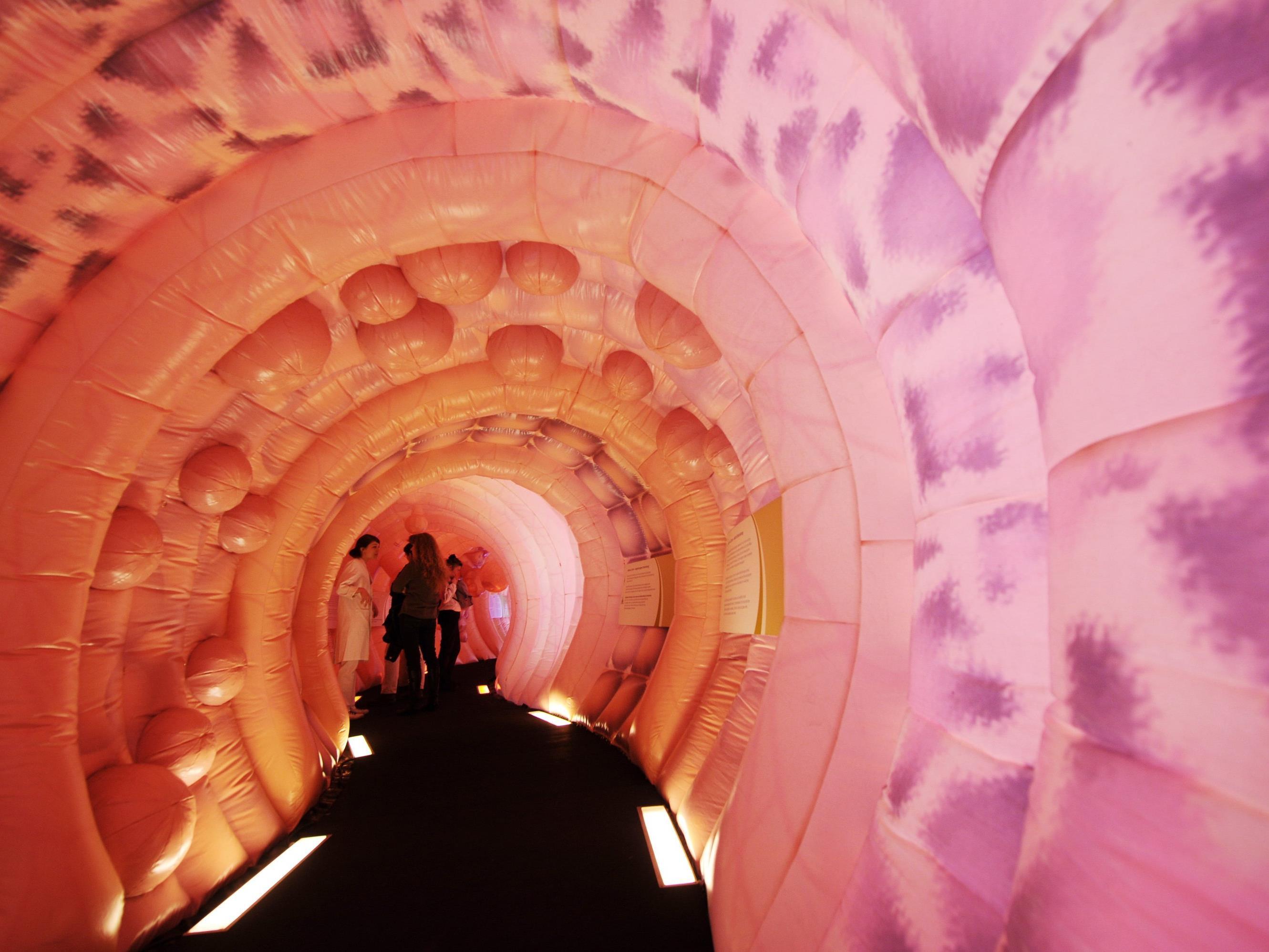"""Besucher stehen in einem begehbaren Darmmodell in München. Es zeigt sehr anschaulich die Entwicklung vom """"unauffälligen"""" Polypen bis zum Darmkrebs."""