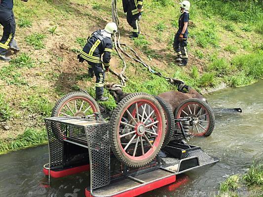 Das Pferd überlebte den Unfall nicht