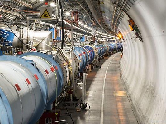 Marder löste Kurzschluss im CERN aus