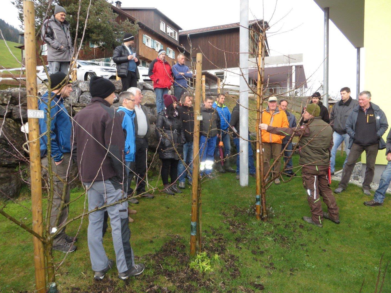 Baumschnittkurs im Garten von Kursleiter Franz Berchtold, Alberschwende