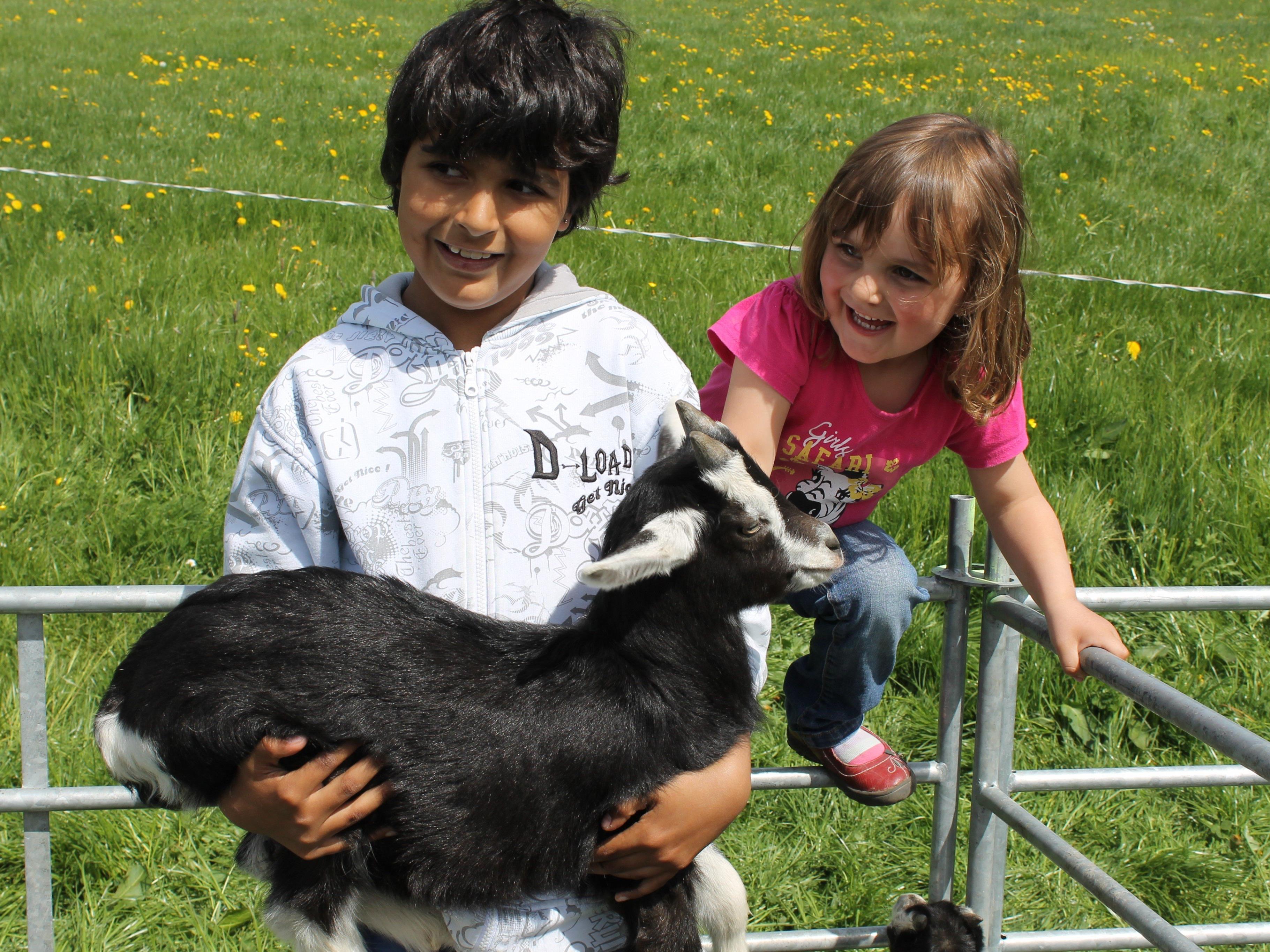 Auch im vergangenen Jahr, freuten sich die Kinder über die putzigen Tiere