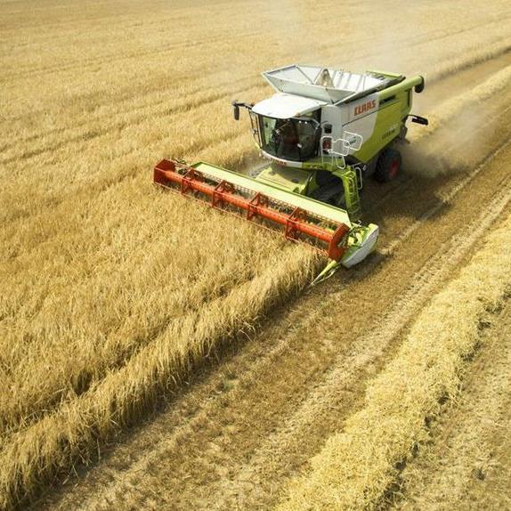 Studie: TTIP kostet Österreich Arbeitsplätze und beschleunigt Bauernsterben