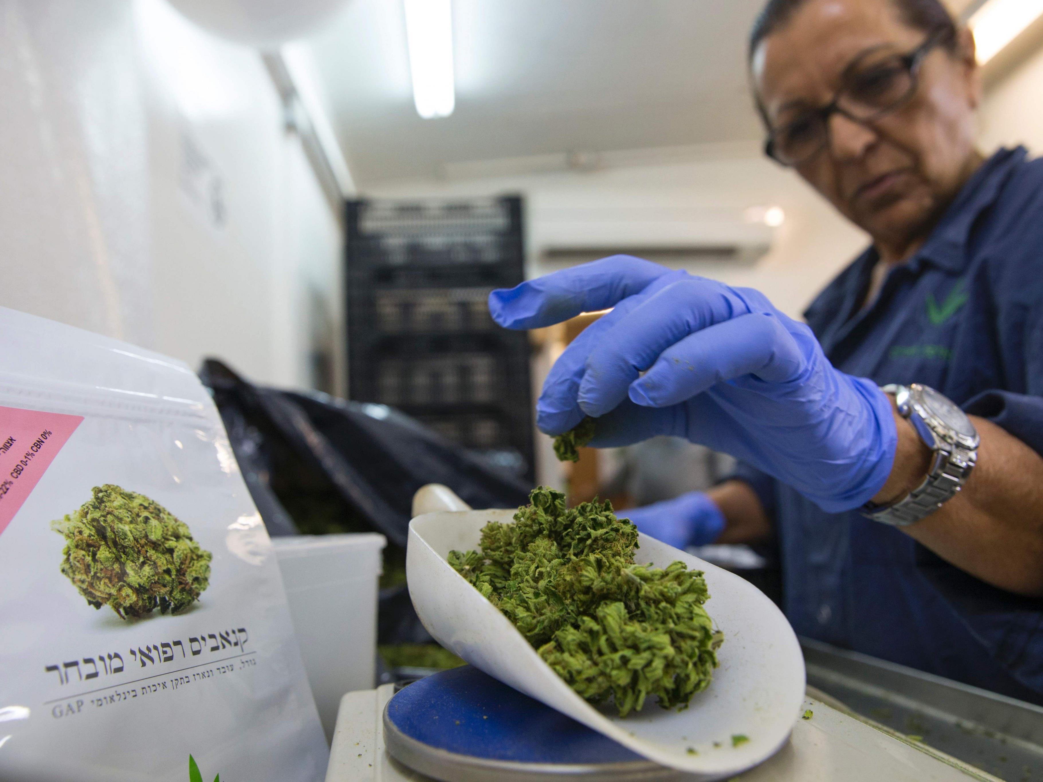 Cannabis auf Rezept soll es in Deutschland ab 2017 geben.