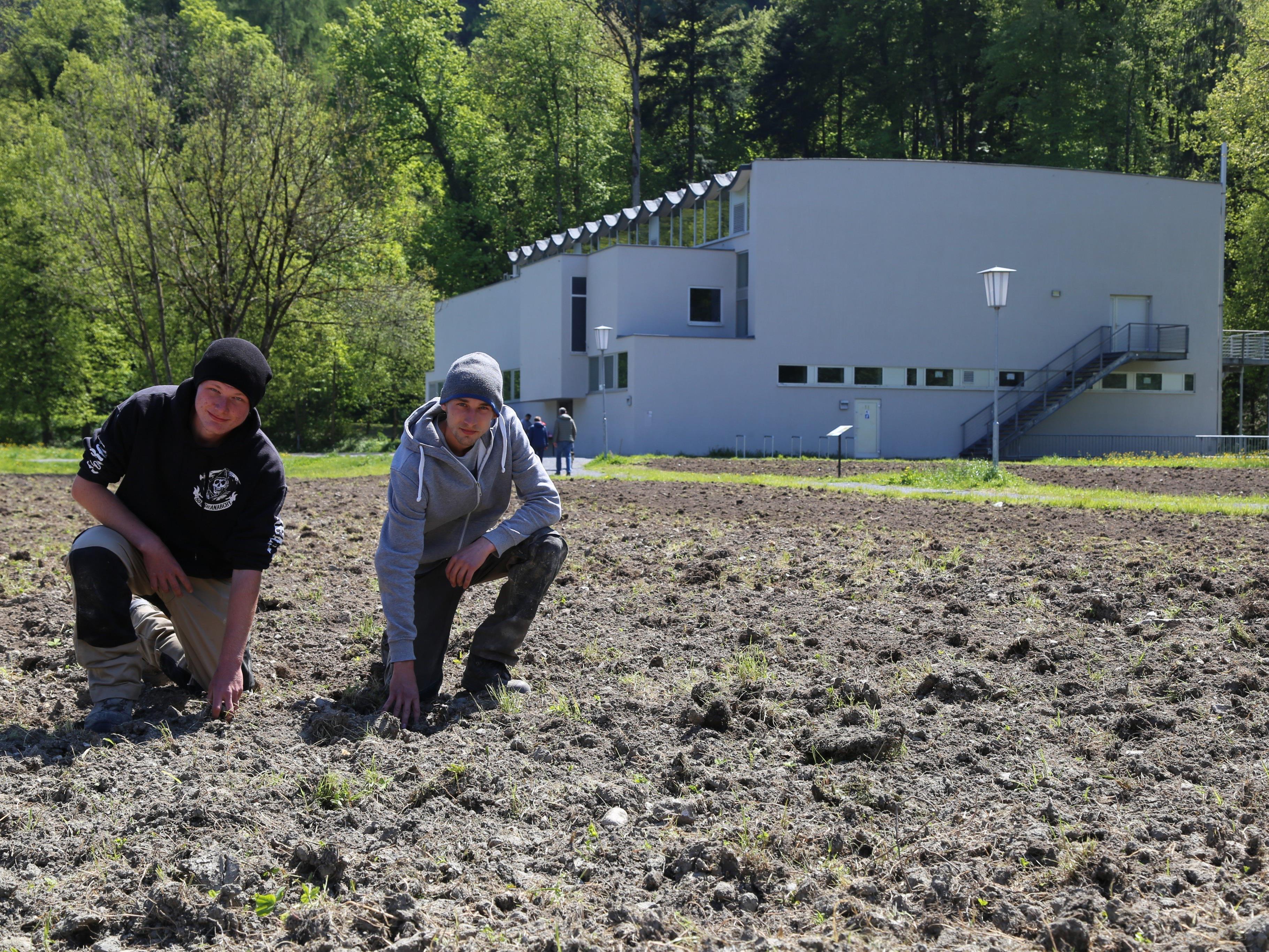Christoph Schoaß und Andreas Oberlerchner (Aqua Mühle) verschönern das Reichenfeld.