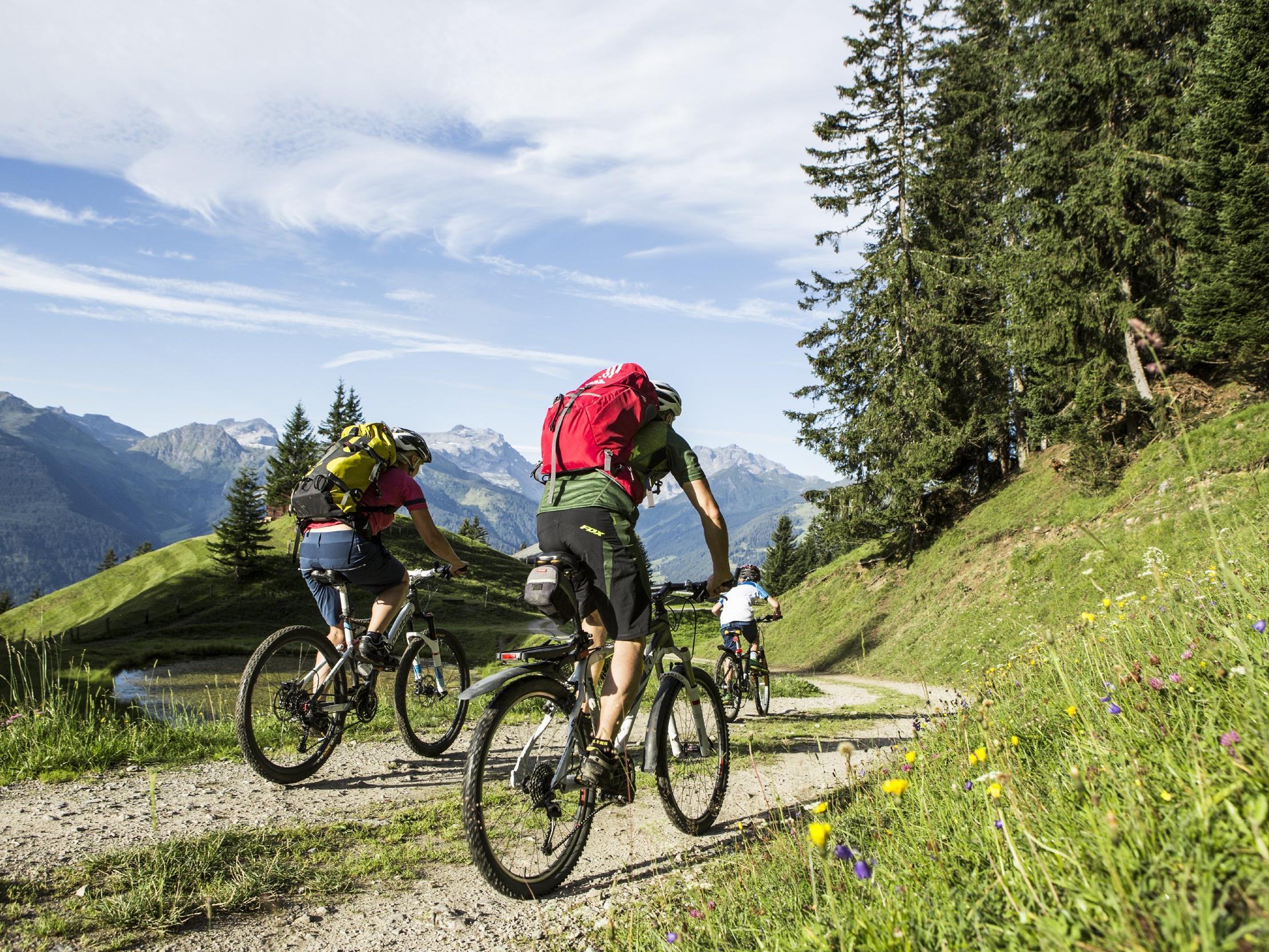 Die Beachtung einiger weniger wichtiger Regeln fördert ein friedliches Miteinander von Mountainbikern mit Wanderern, Jagd und Forst.