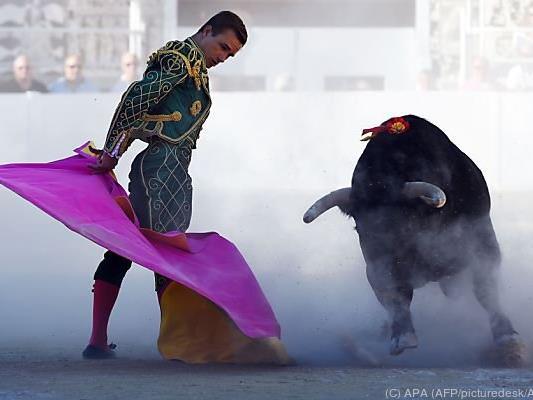 Stierkampf auch in Spanien höchst umstritten