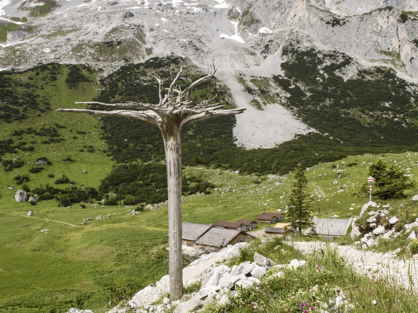 """Am 11. und 13. August führt der Montafoner Künstler Roland Haas durch den von ihm gestalteten """"Gauertaler AlpkulTour"""" Weg."""