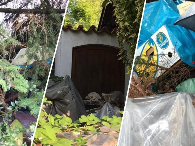 Starke Geruchsbelästigung, Dreck, Tiere - Die Anrainer der Kehlerstraße leiden unter einem stark vermüllten Grundstück in ihrer Straße.