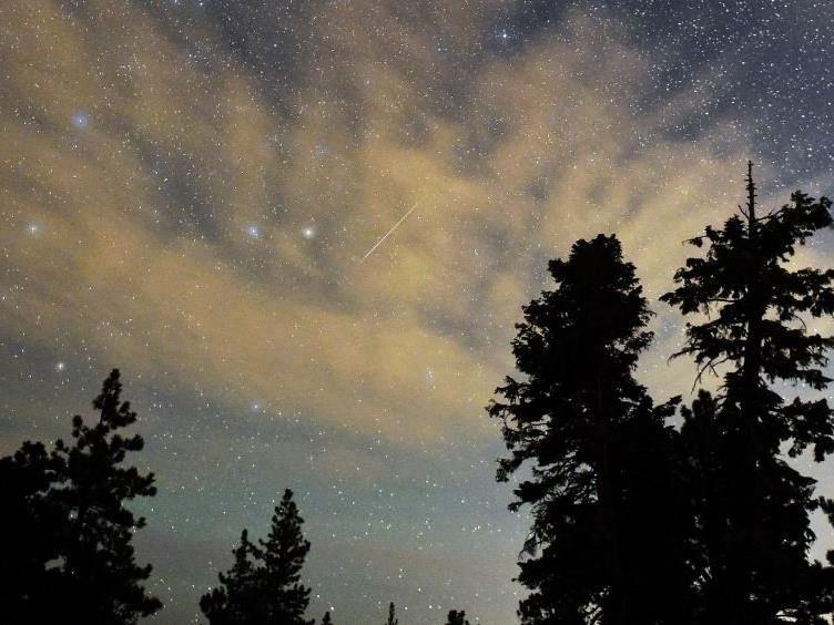 Falls das Wetter mitspielt, wird es auch über Vorarlberg Sternschnuppen zu sehen geben.