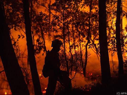 Landesweit loderten rund 100 Brandherde