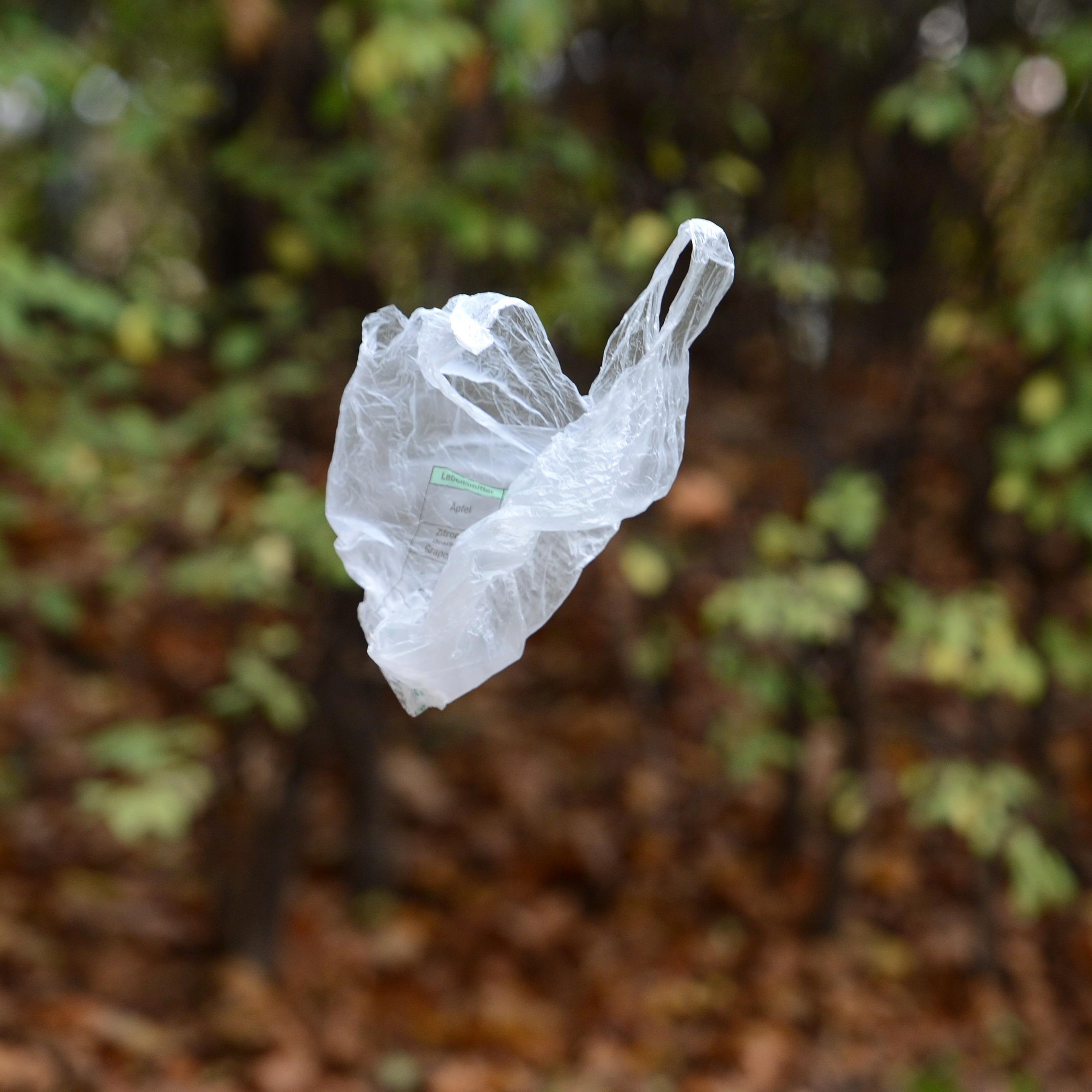 Plastiksackerl sorgen für eine große Belastung der Umwelt.