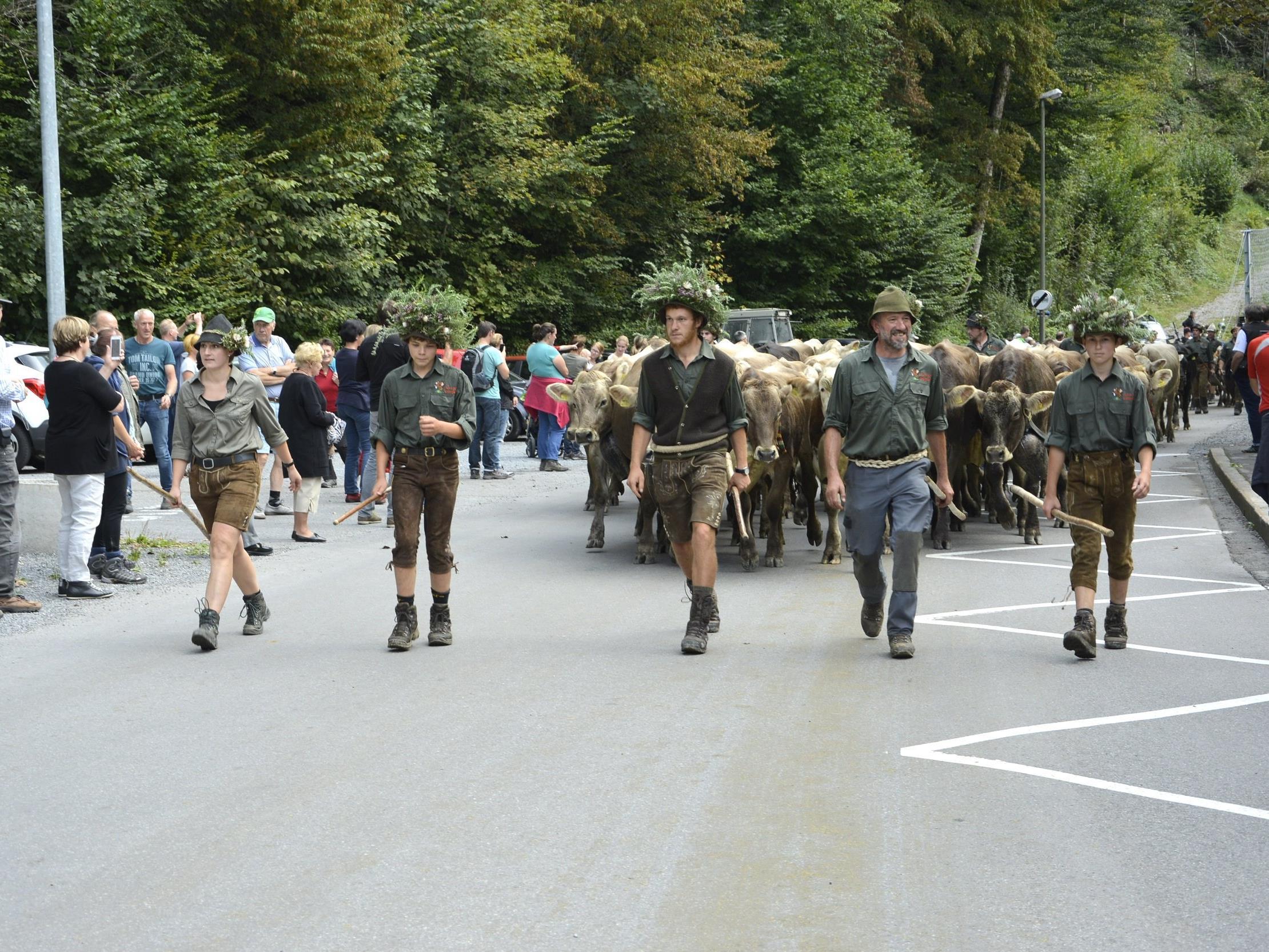 """Unter viel Applaus zogen die Hirten mit der Herde von """" Alten Hof/Unterfluh"""" herunter."""