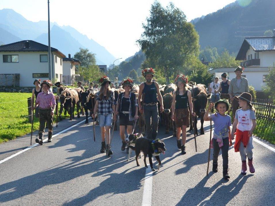 Alpabtrieb Klostertal