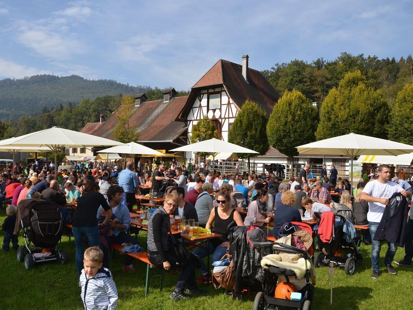 Das Kürbisfest hat für Groß und Klein viel zu bieten.
