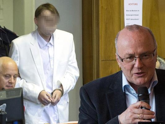 Gerichtspsychiater Reinhard Haller hat Kritik am Prozess gegen den Amokfahrer von Graz geübt.