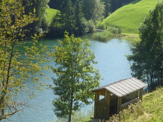 Der wunderschöne Seewaldsee.