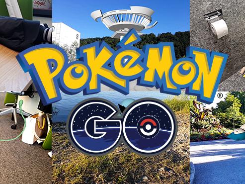 So würde die Zukunft von Pokémon Go in Vorarlberg aussehen.
