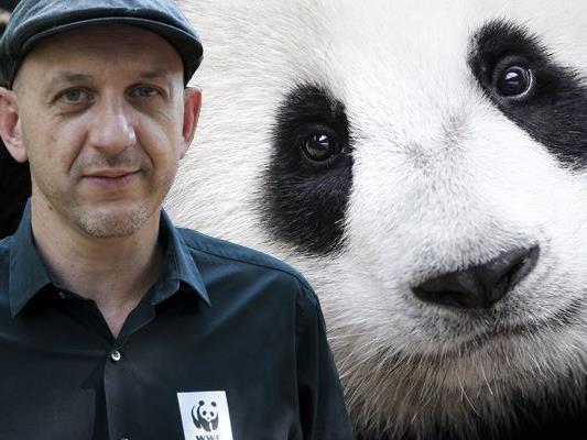 Kommunikationsspezialist Gerhard Auer aus Vorarlberg übernimmt die Leitung der Kommunikation und Kampagnen beim WWF Österreich.