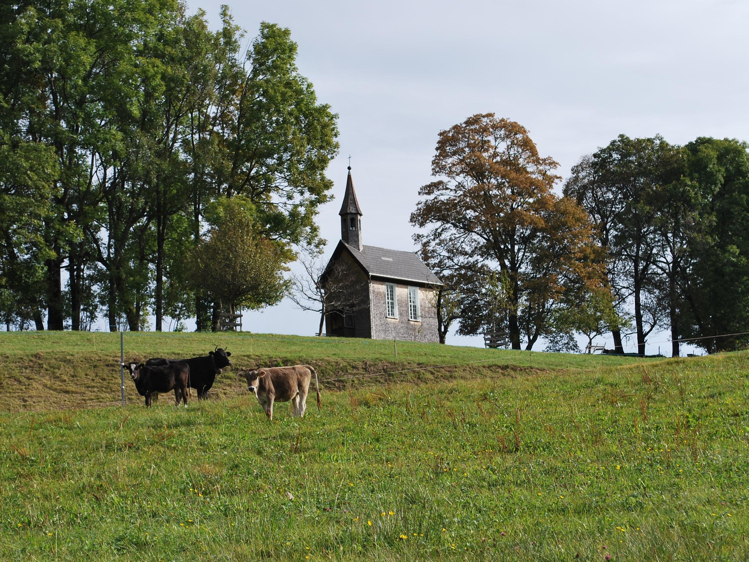 Ein Kleinod ist die Kapelle Ammenegg oberhalb von Dornbirn