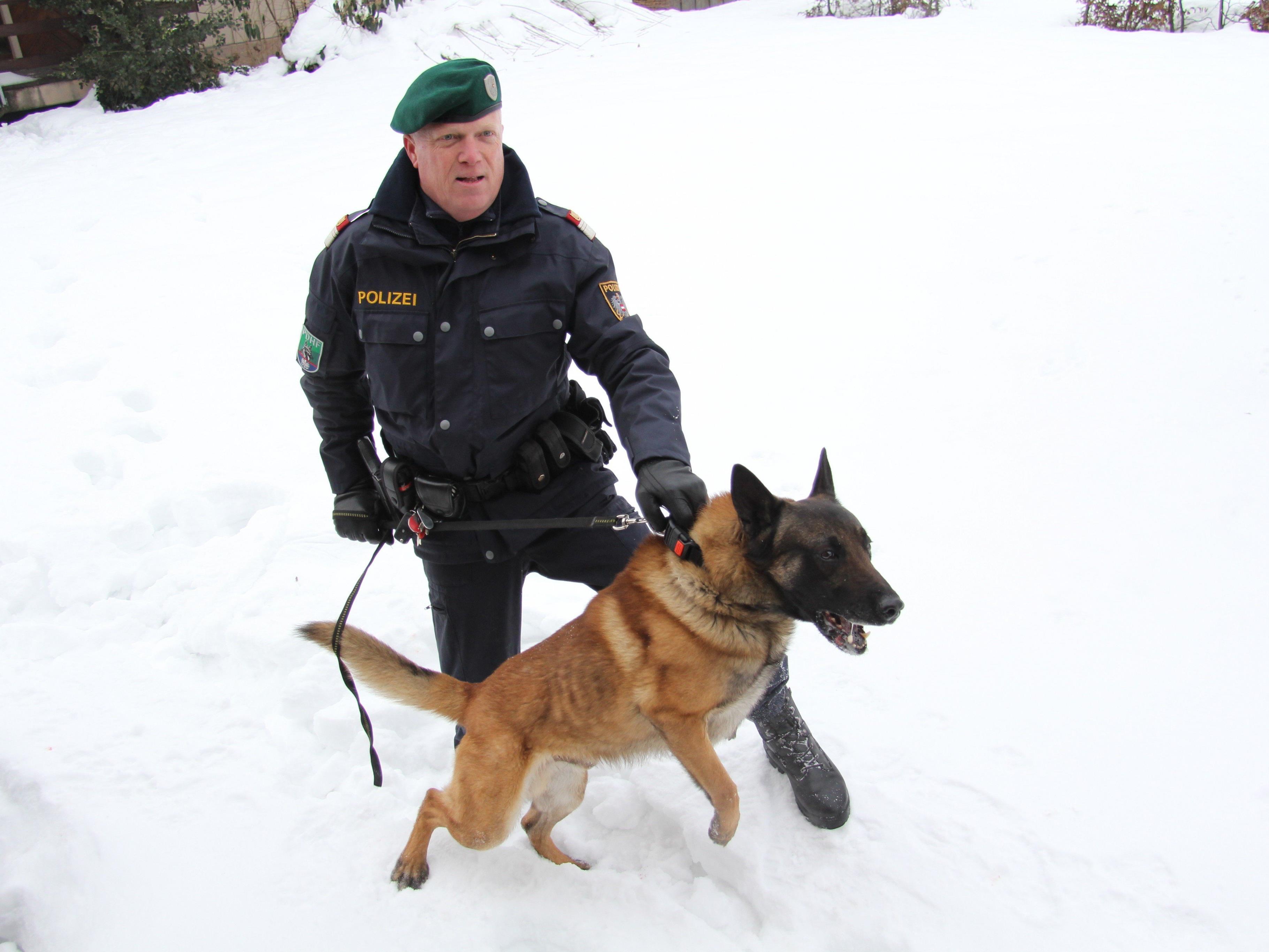 Ein Polizeihund half bei der Festnahme eines Einbrechers in Sulz.