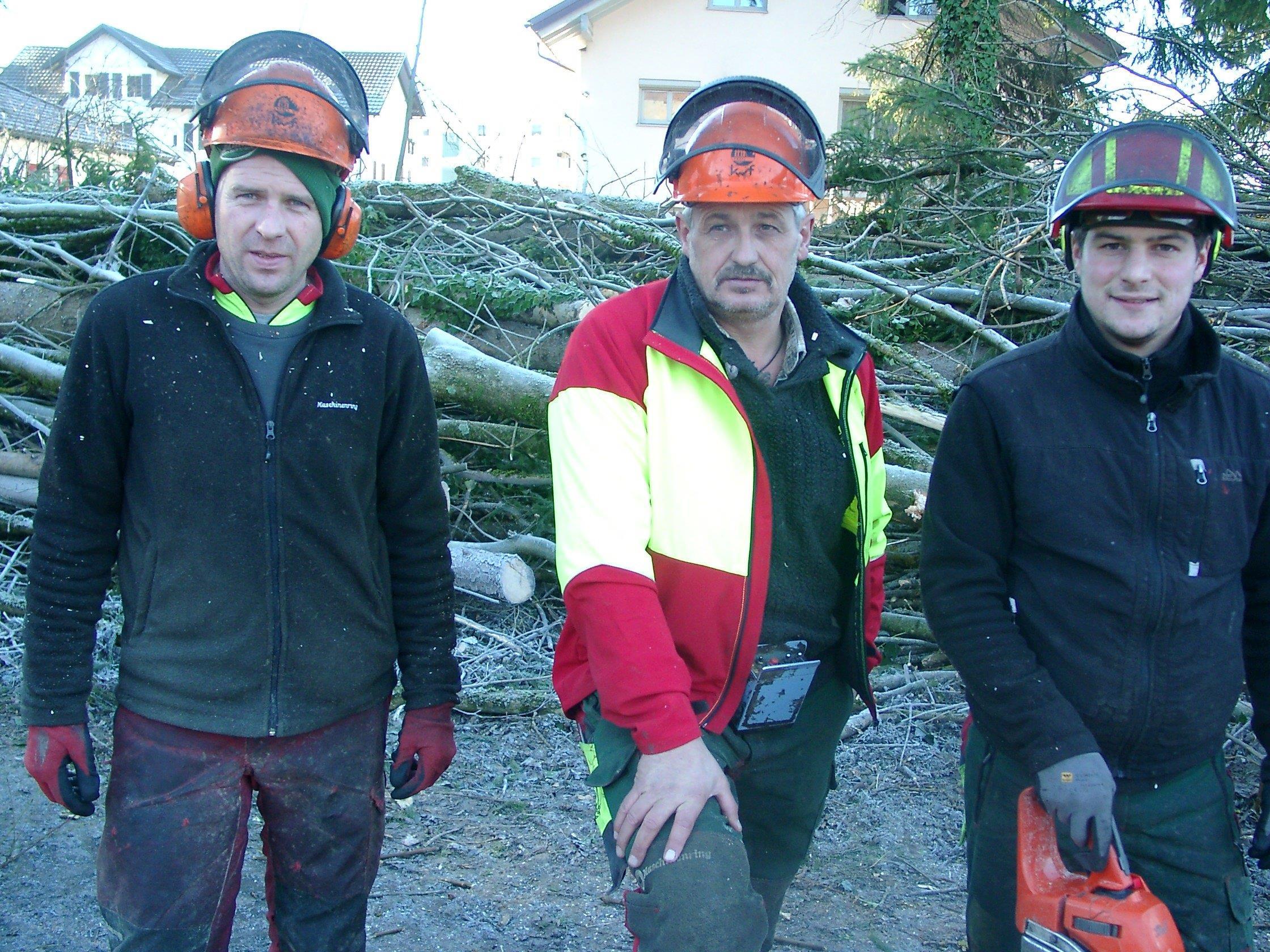 Mitarbeiter vom Maschinenring Oberland entfernen Eschen am Frutzdammweg