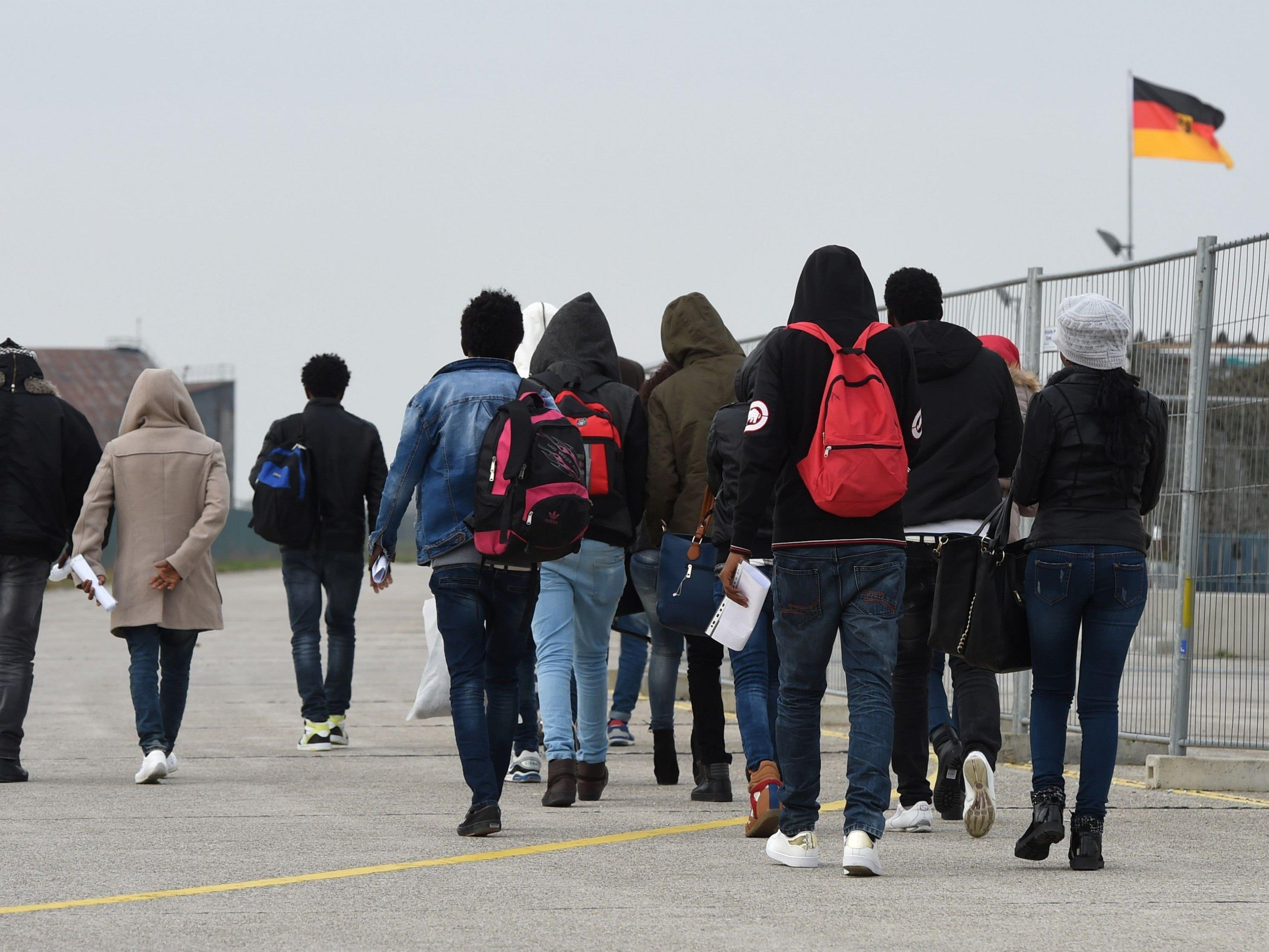 Drei Viertel der Fälle an Grenze zu Österreich.