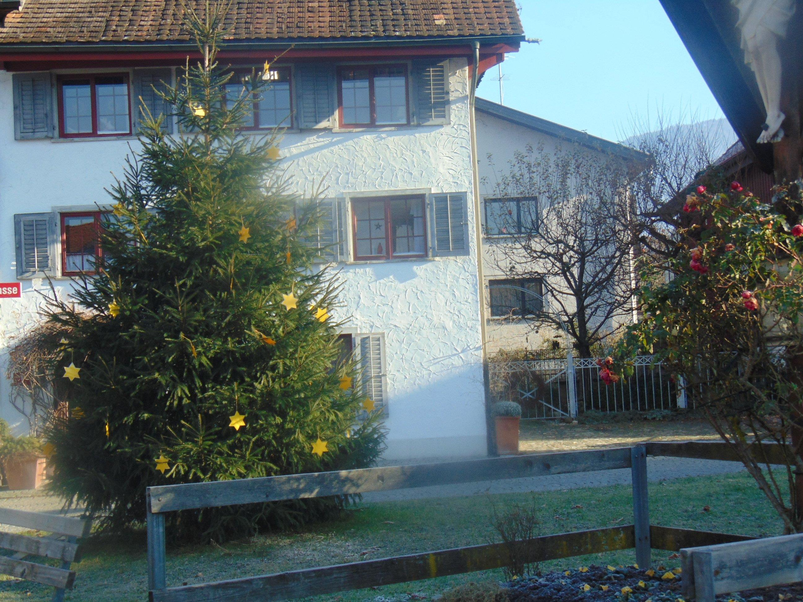 Der Sternenbaum am Hatler Brunnen
