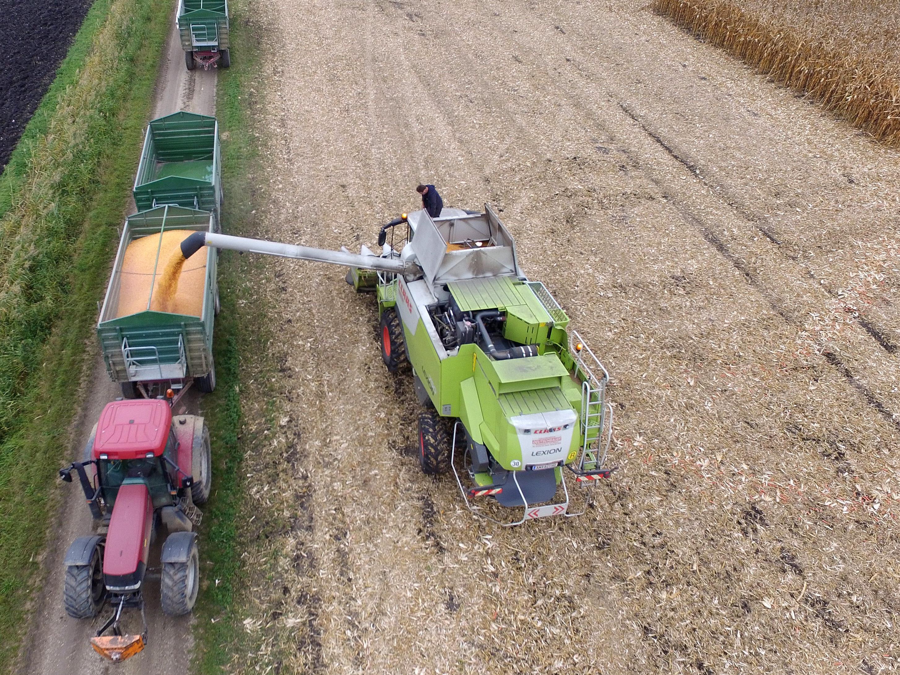 Im Landwirtschaftsbereich gibt es Anfang 2017 gute Jobprognosen.