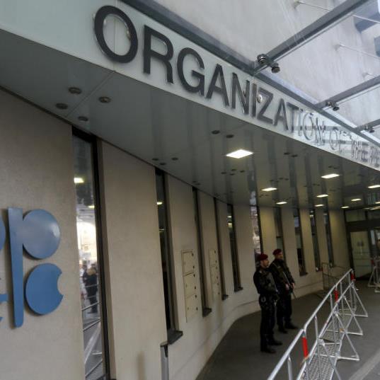 Opec-Treffen in Wien am Samstag.