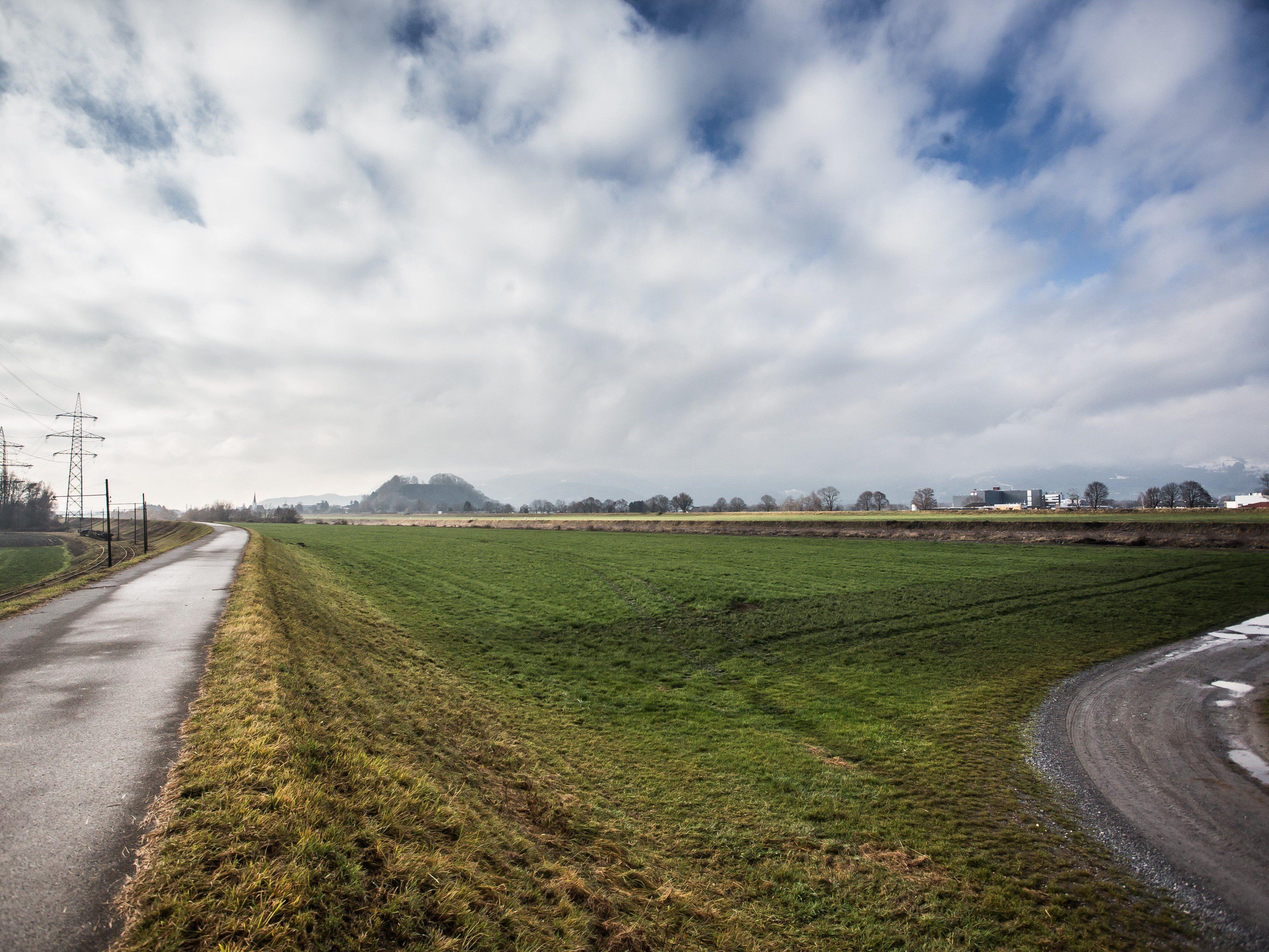 Das Hochwasserschutzprojekt RHESI ist umstritten.