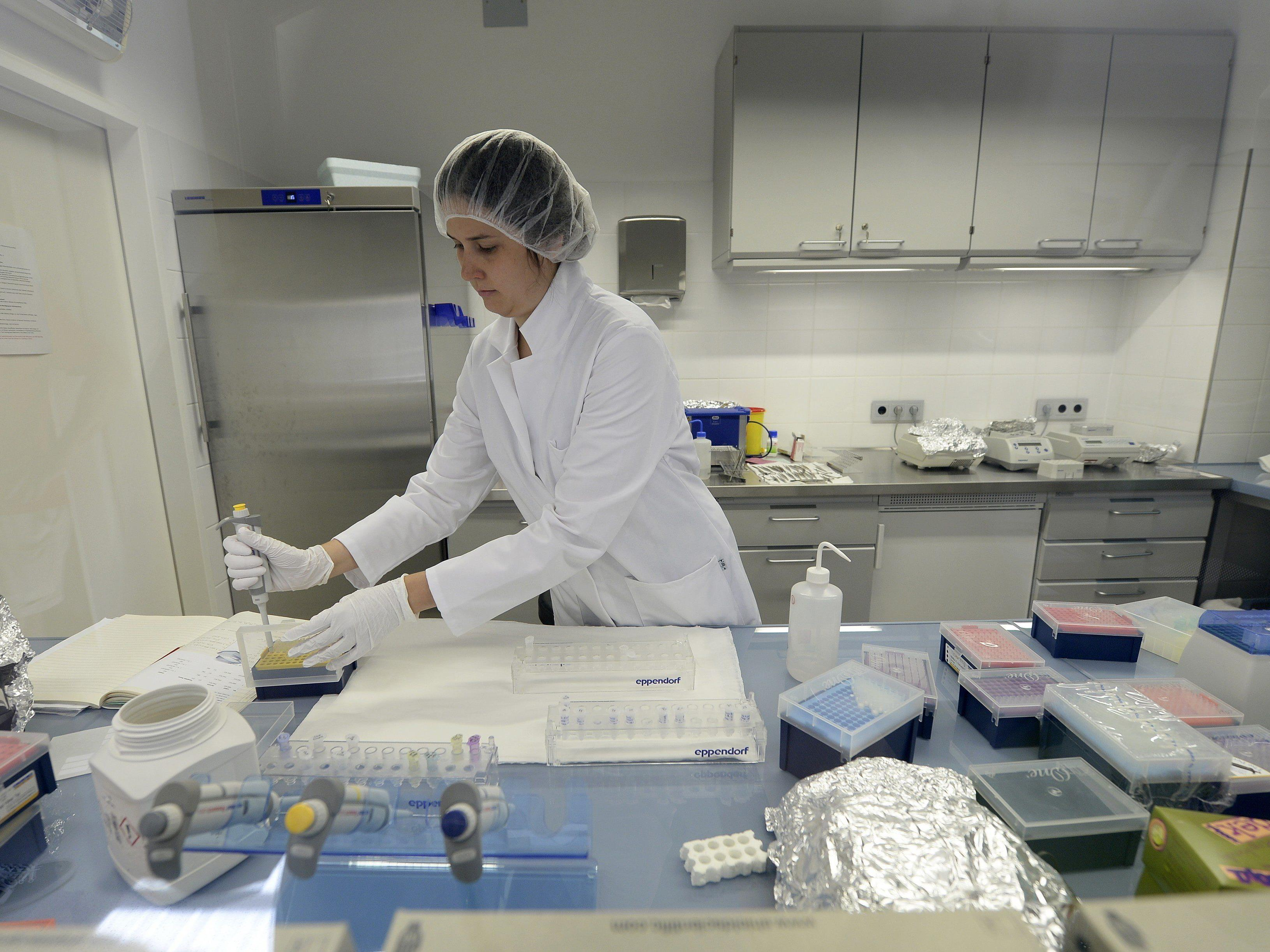 Krebsmedikament zähmt wildgewordene Riesenfresszellen.