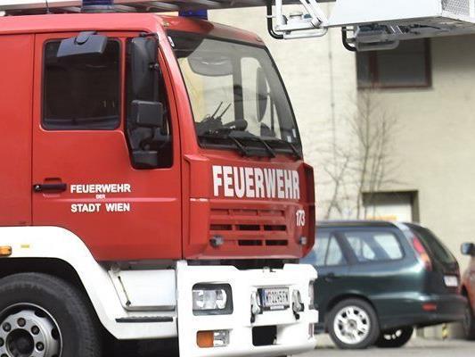 Die Feuerwehr Feldkirch-Tisis musste den Fahrzeugbrand löschen.