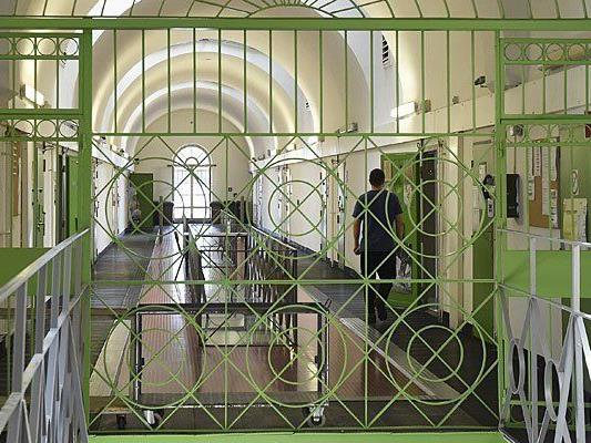 Das Wiener Landesgericht nahm eine ganze Reihe von Haftgründen an