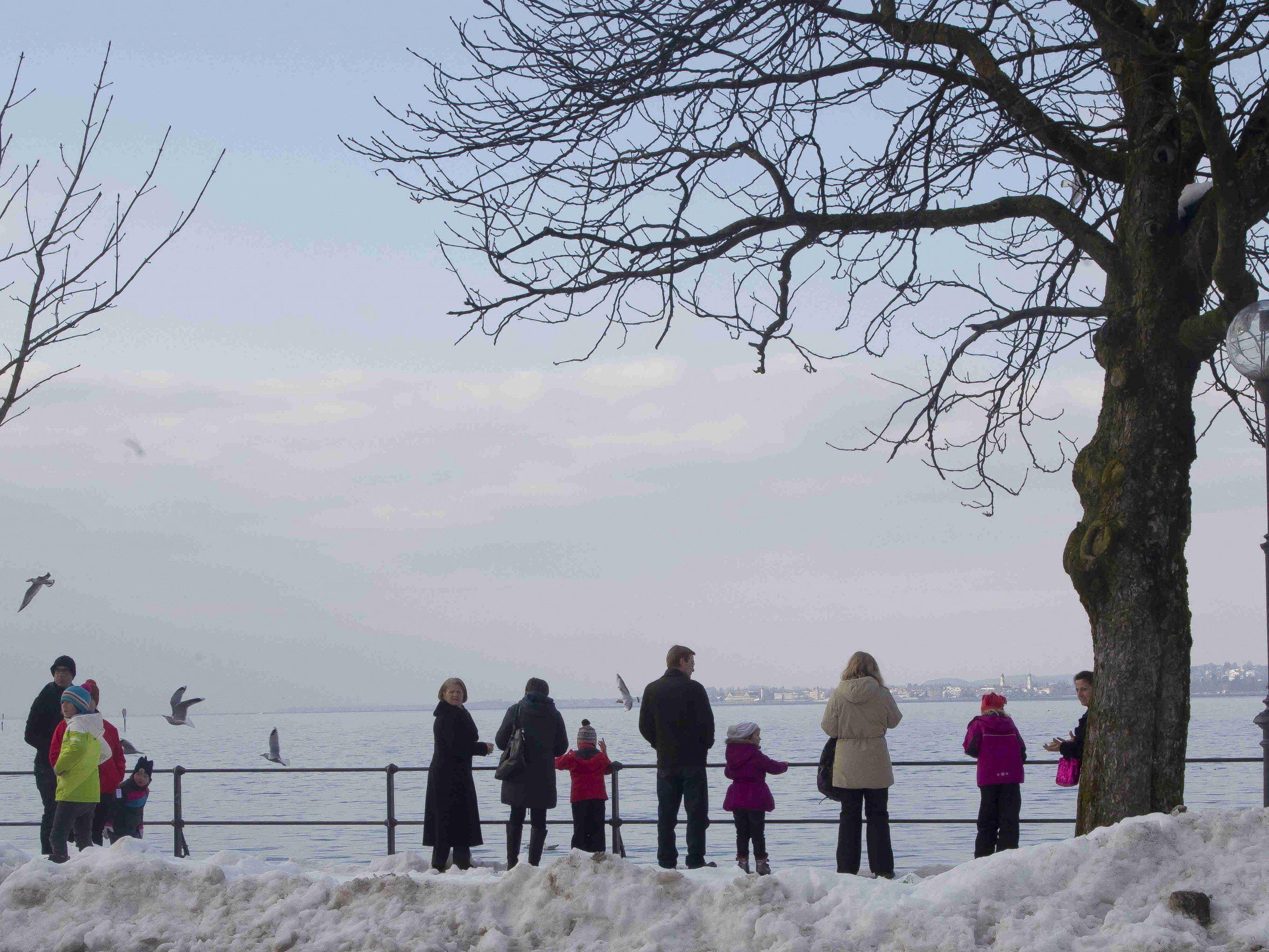 Die Temperaturdaten für Bregenz llassen auf einen richtig kalten Jänner 2017 schließen.