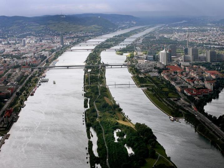 Die Festnahme der 22 Männer erfolgte im Bereich der Donauinsel.