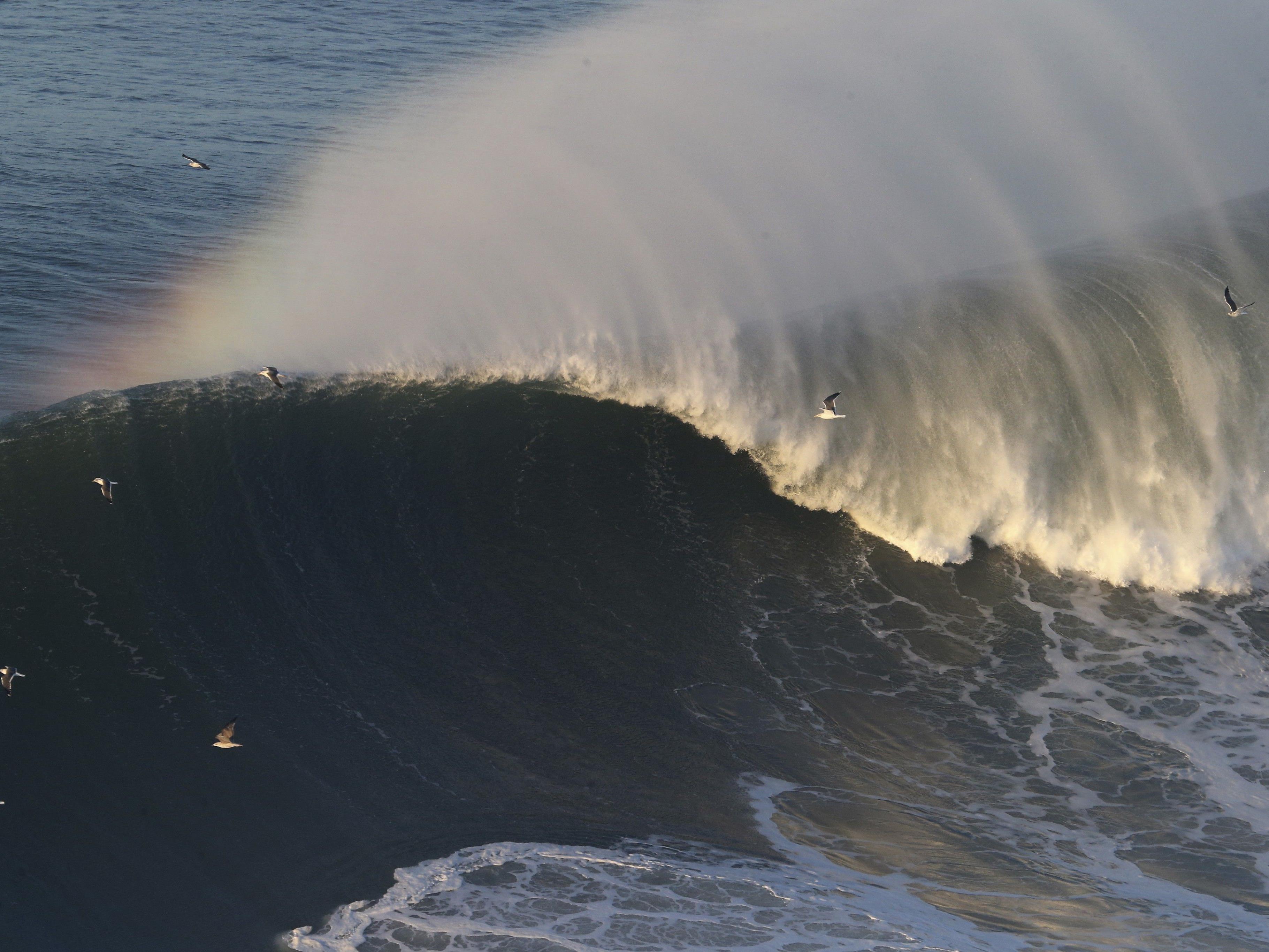 Weltweit suchen Adrenalinjunkies nach den größten Wellen.