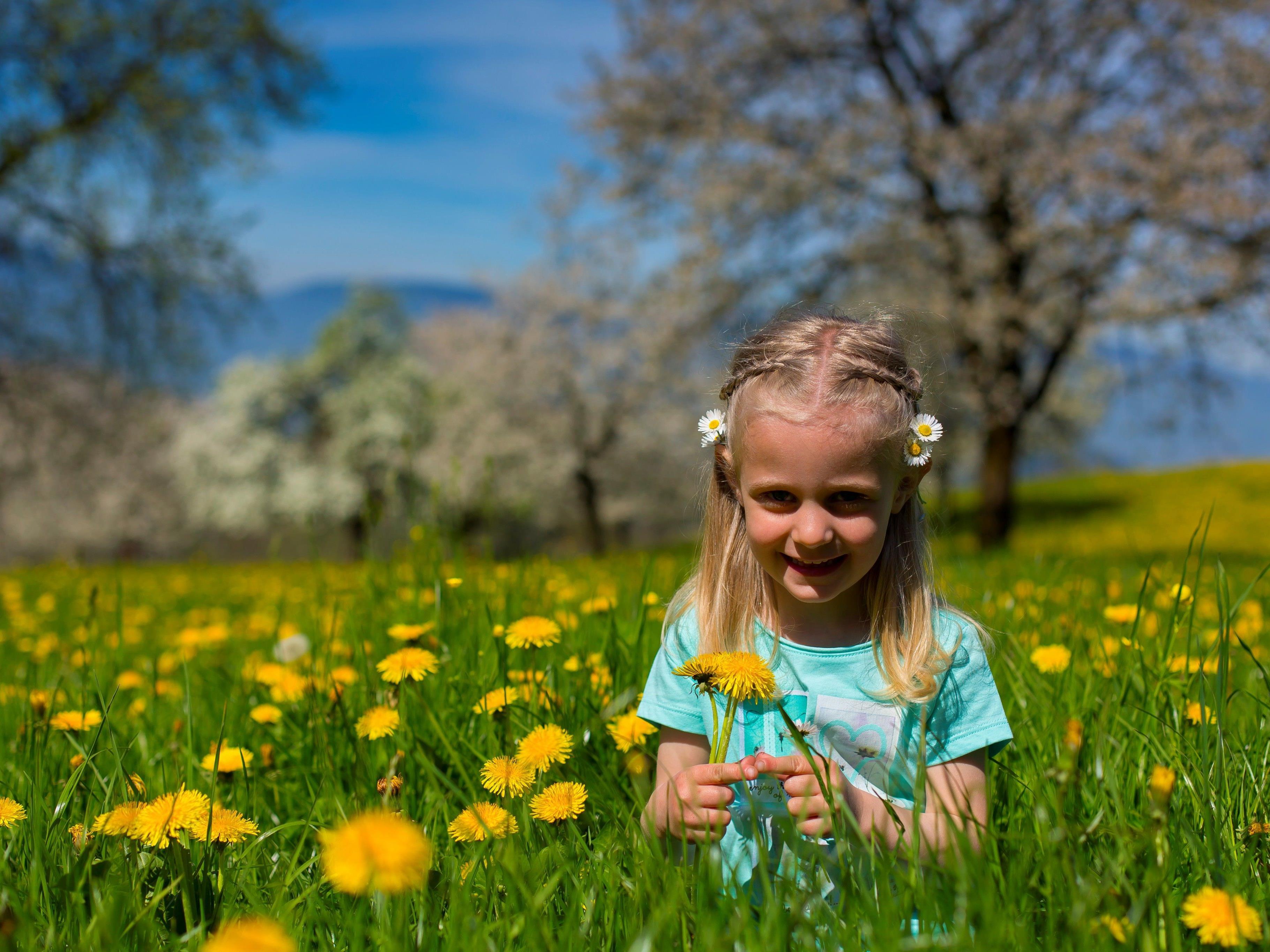 Der Frühling ist in vollem Gange.