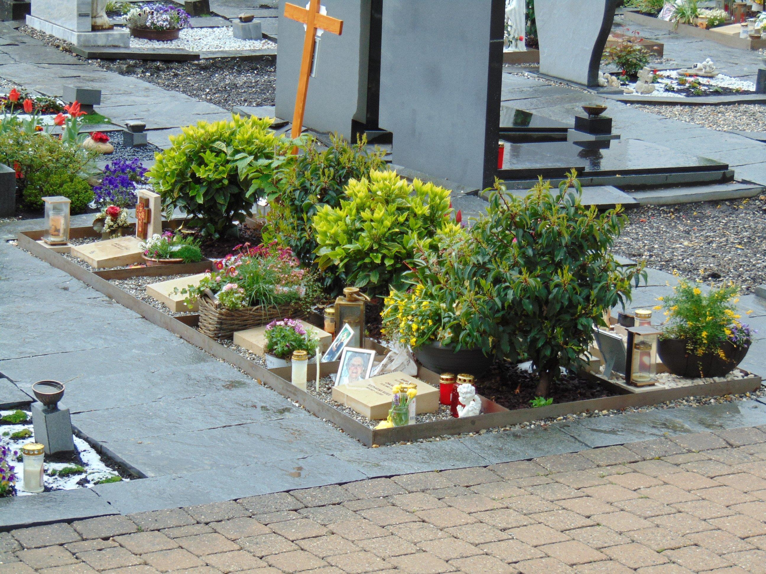Die neuen Erdurnengräber am Altacher Ortsfriedhof