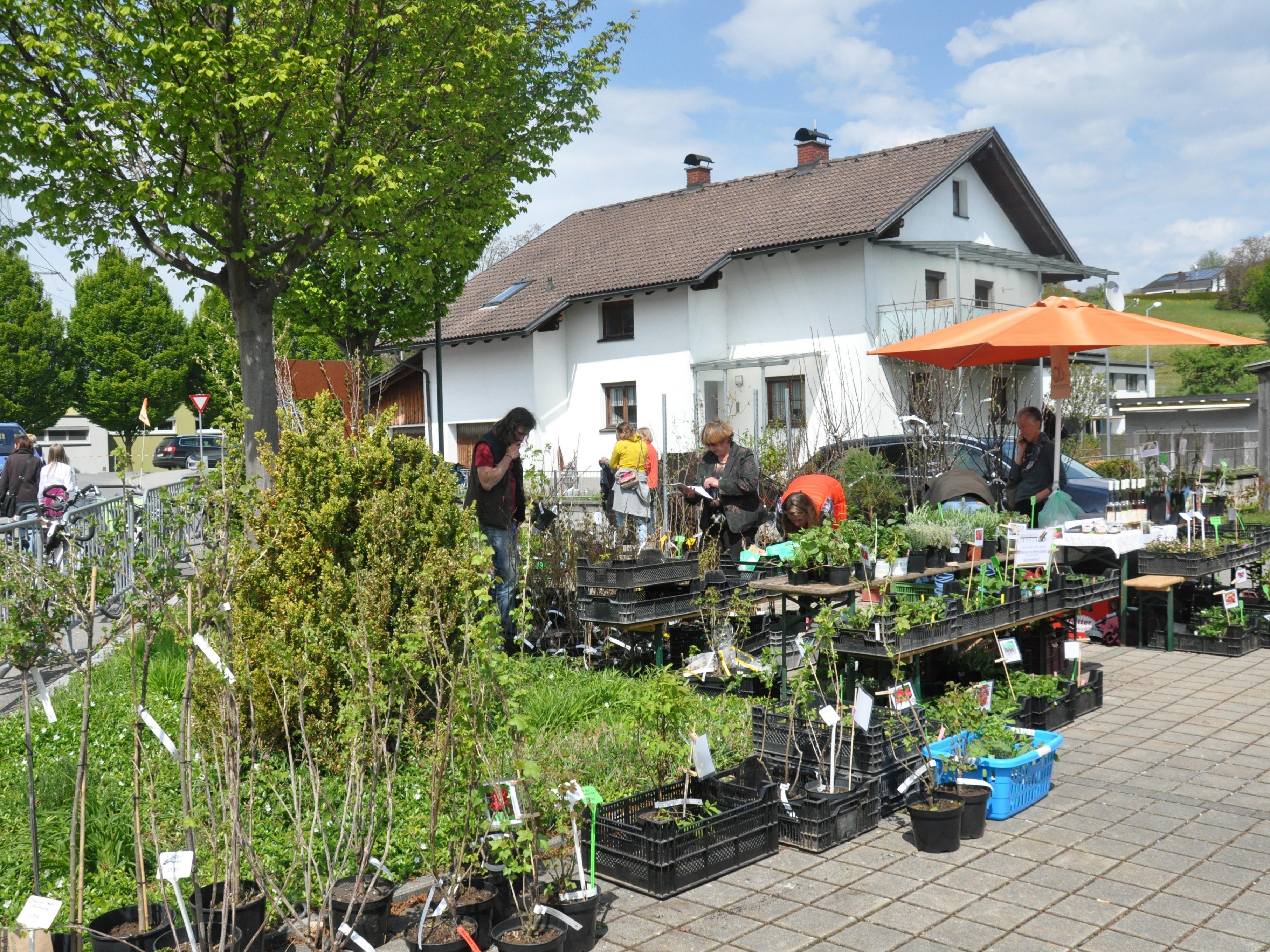 Arche Noah Markt 2016