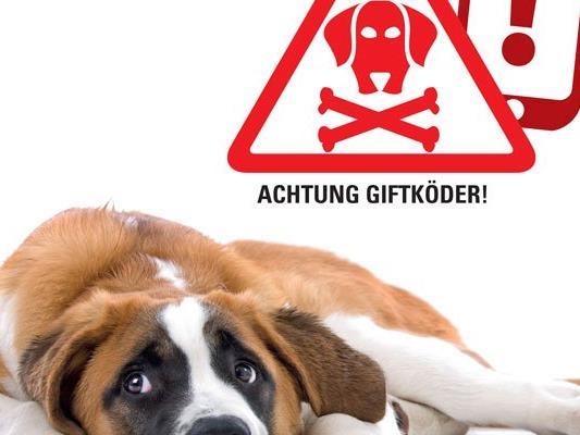 Hundebesitzer in der Donaustadt sollten Vorsicht walten lassen