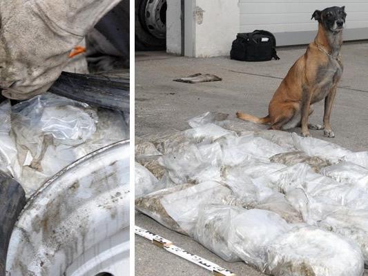 Polizeihund Frankie mit seinem Fund.