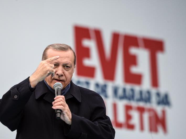 Präsident Erdogan hatte die Auslandstürken aufgerufen, sich massenhaft zu beteiligen
