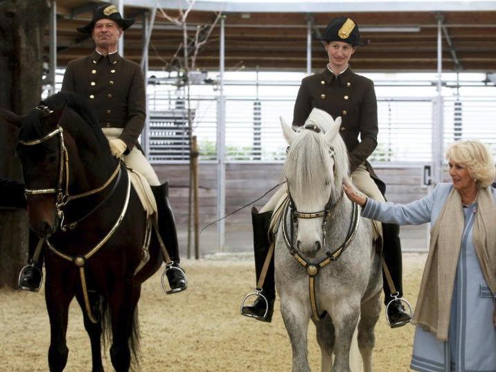 Herzogin Camilla zu Besuch in der Hofreitschule.